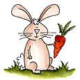 Bunnycarrotweb