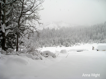 AnnaWight021-425