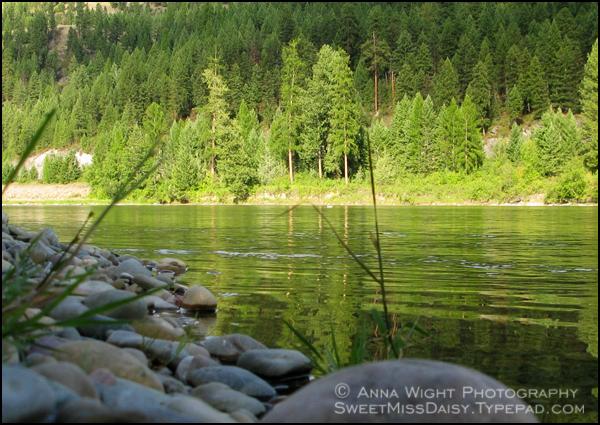 AnnaWight200908-088web600