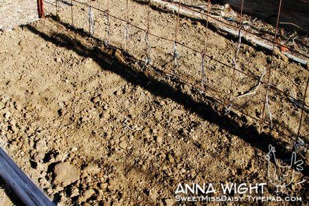 AnnaWight6863web600