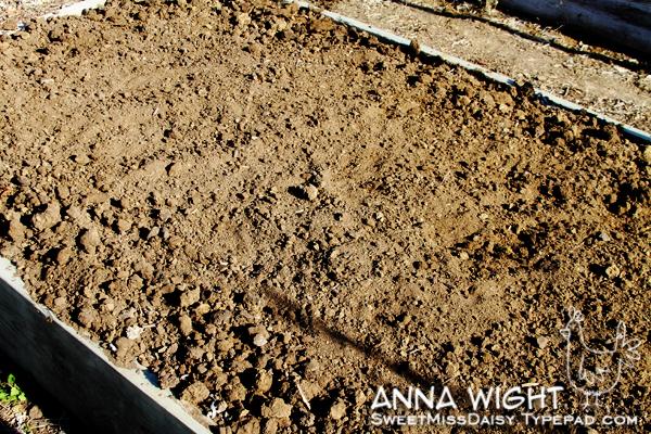 AnnaWight6862web600