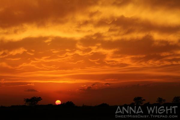 AnnaWight7538