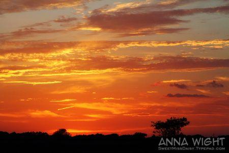 AnnaWight8467