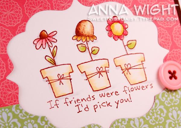 AnnaWight8208