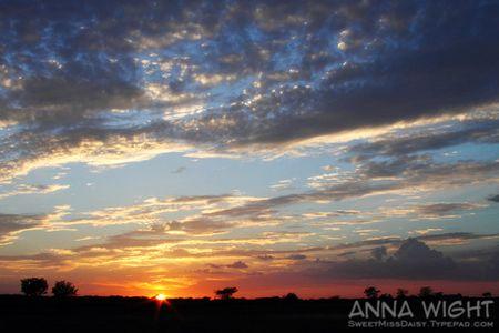 AnnaWight8449