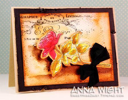 AnnaWight8802