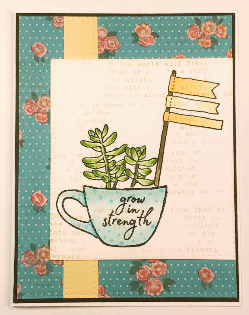 Cup of Succulents Anna Wight