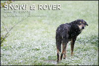 Snowandrover
