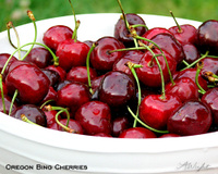 Oregoncherries_2